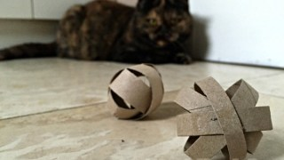 TP Roll DIY Cat Toy - Red Ted Art