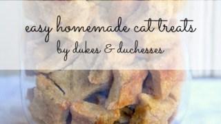 Easy Homemade Cat Treats