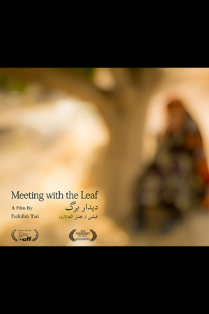 Meeting with the Leaf