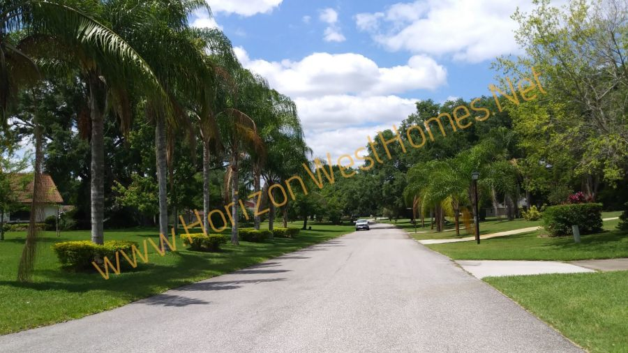 Country Lake Estates street view.  Homes for sale in Winter Garden Florida
