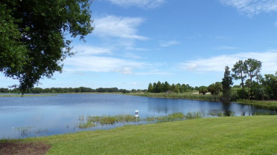 Lakeshore Winter Garden Florida Lake View.  Luxury lakefront lakeside homes.  Real estate on the lake