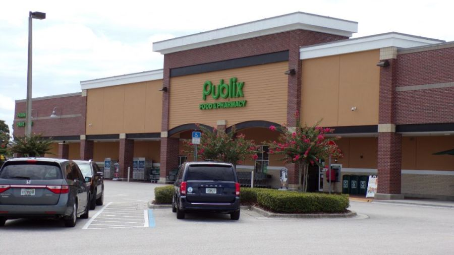 stoneybook west publix homes for sale