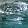 Drop hitting water