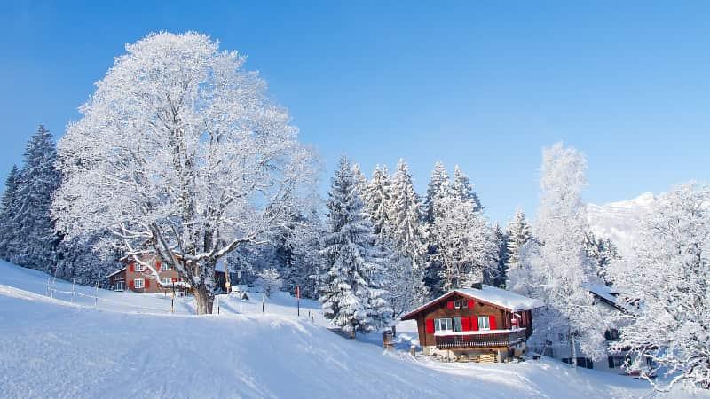 Ski in Ski out en wintersport aan de piste
