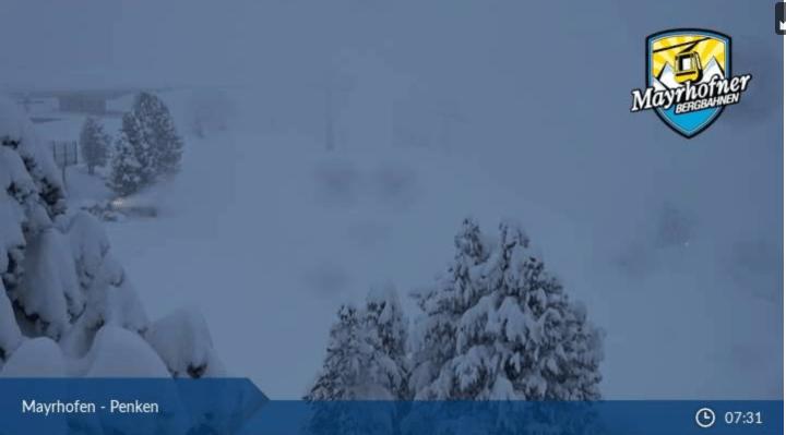 Dik pak sneeuw in Mayrhofen in de bomen