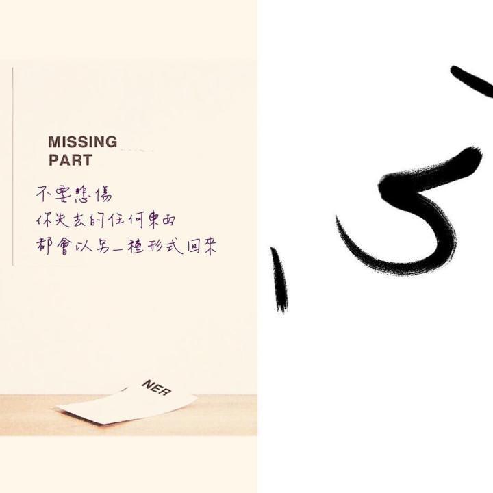 missing part-心