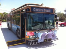 Auf Anna Maria verkehren die Busse im Minutentakt und sind kostenlos
