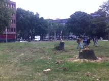 Park an der Kö
