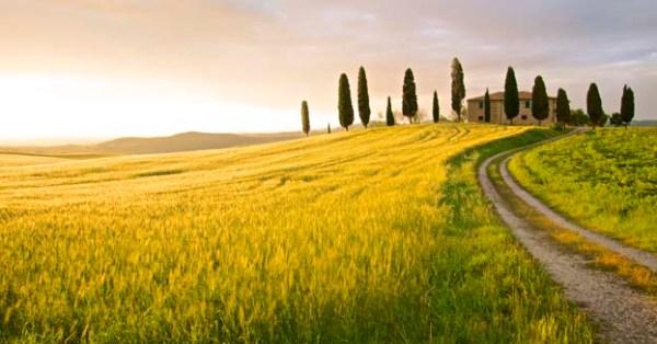 La Toscana regina dell39agriturismo in Italia InItalia