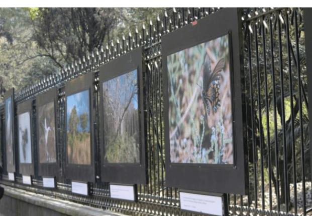 Exposiciones en la CDMX por si no vas a salir de la ciudad en el puente Captura-de-pantalla-2018-02-02-a-las-8.41.52-p.m.