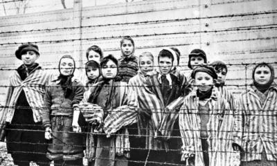 ley del holocausto, holocausto, Segunda Guerra Mundial, SGM.