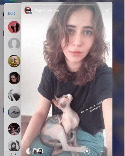 Día Internacional del Gato: celebridades que aman a los mininos Captura-de-pantalla-2018-08-08-a-las-5.04.36-p.m.
