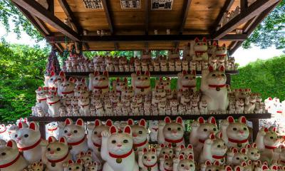 templo de los 'gatos de la suerte'
