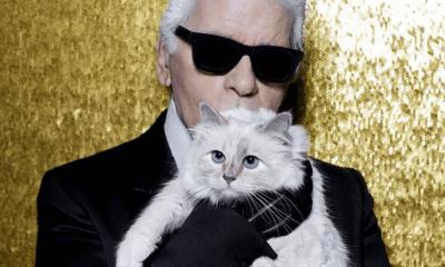 El gato de Karl Lagerfeld