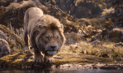 trailer de 'The Lion King'