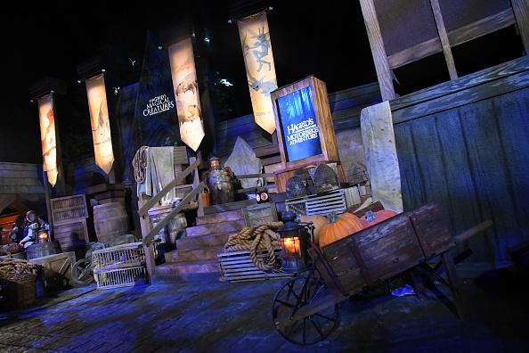 Actores de 'Harry Potter' se reunieron para inaugurar una nueva atracción gettyimages-1155357268-594x594