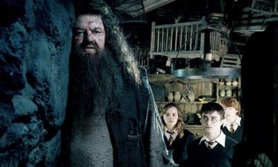 Posibles cameos de Hagrid y Tom Riddle en Fantastic Beasts 3