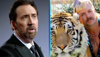 fan art de Nicholas Cage como Joe Exotic