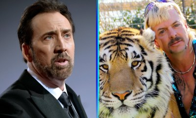 fan art de Nicholas Cage como Joe Exotic