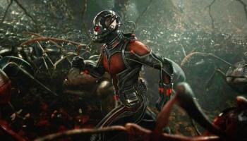 The Winter Soldier provocó el surgimiento de Ant-Man