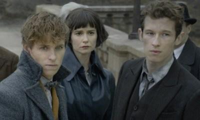 David Yates dirigirá más entregas de Fantastic Beasts