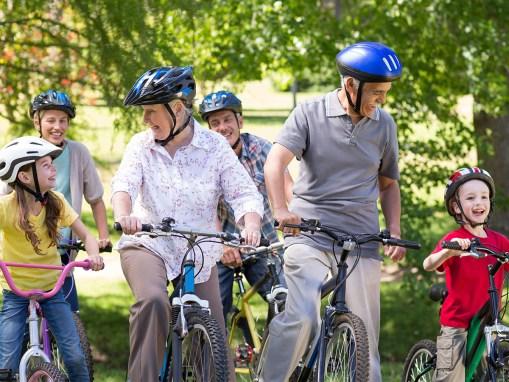 Wandern & Radfahren zwischen Wald und Wiesen