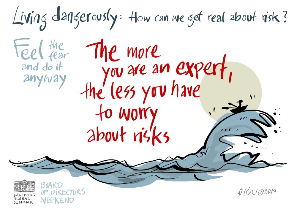 The more you are an expert, the less you have to worry about risks