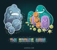 ciencia, humor, divertido, gracioso, science, fun, funny, inmune, immune, star wars, linfocitos, macrófagos, virus, bacteria, lymphocytes