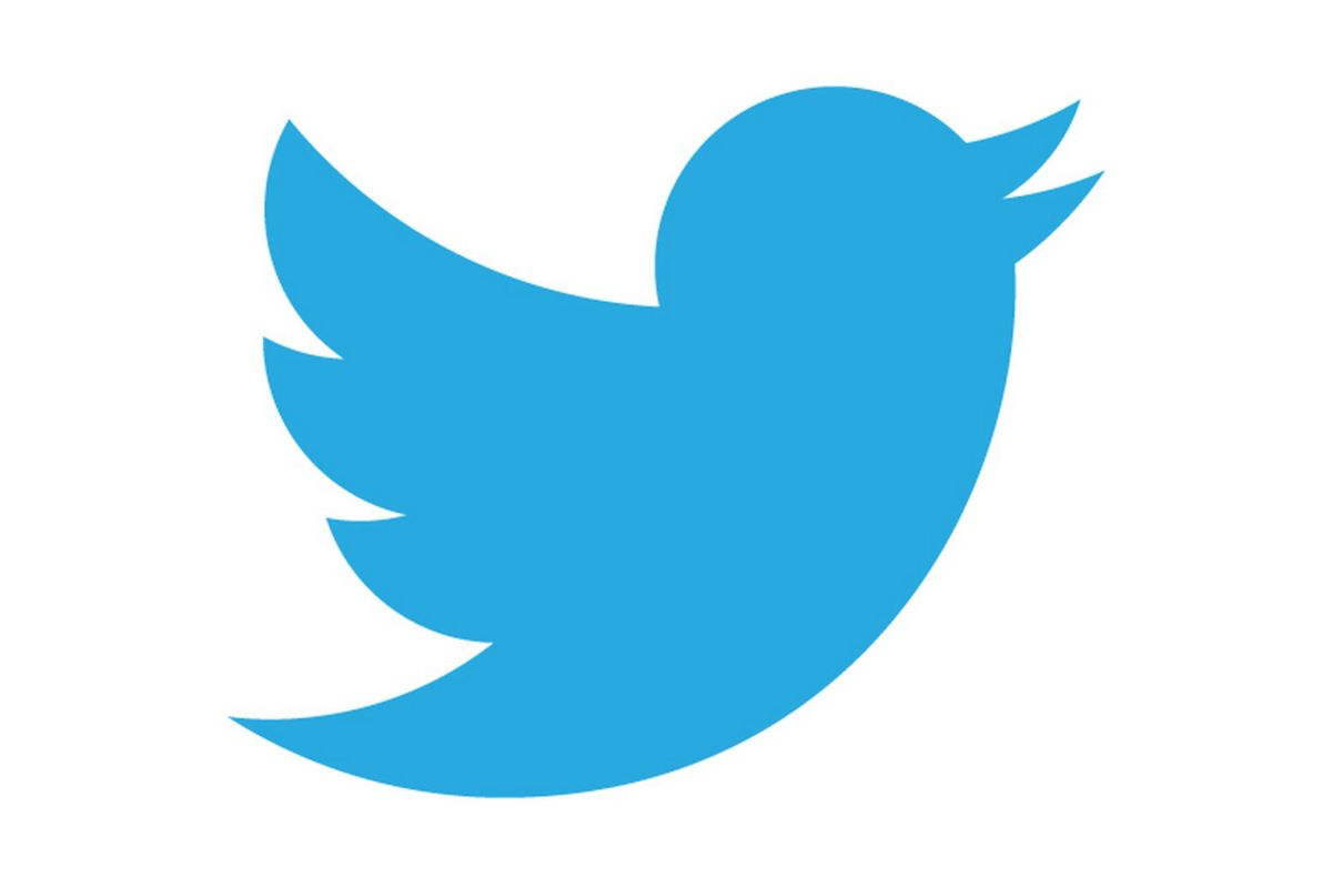 Twitter Icon - Blue Bird
