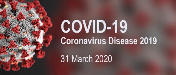 COVID-19 news, 31 March 2020