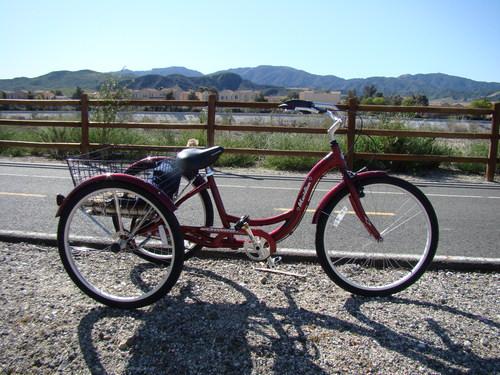 schwinn meridian tricycle