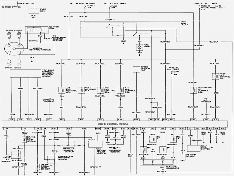wiring harness wiring diagram