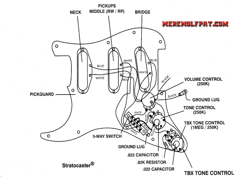 American Standard Stratocaster Wiring Diagram  Wiring Forums