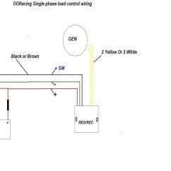 90cc Pit Bike Wiring Diagram Arm Muscles