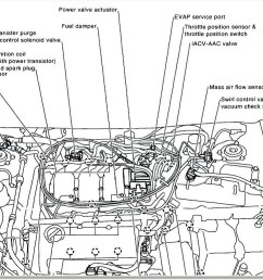 maxima oil pressure switch wiring harness wiring diagram oil maxima oil pressure switch wiring harness [ 1058 x 773 Pixel ]