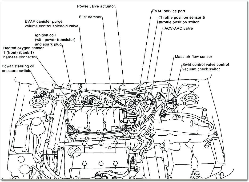 hight resolution of maxima oil pressure switch wiring harness wiring diagram oil maxima oil pressure switch wiring harness