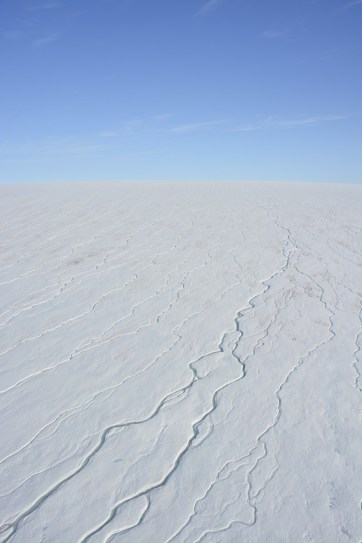 Melt patters in the Milne Ice Shelf as seen from the helicopter.