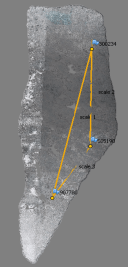 Example of a point cloud (3D model) generated with photogrammetry surveying and SfM processing. Lines denote distances between deployed beacons – used for scale assignment.