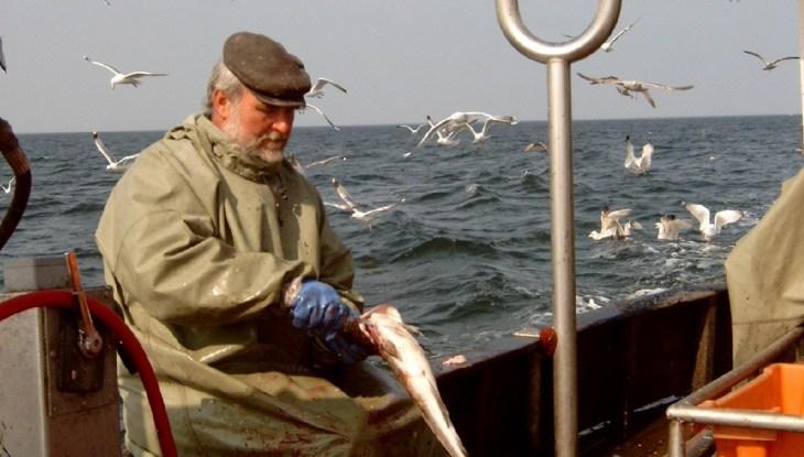 Jürgen Krieger, der letzte aktive Berufsfischer von Dranske