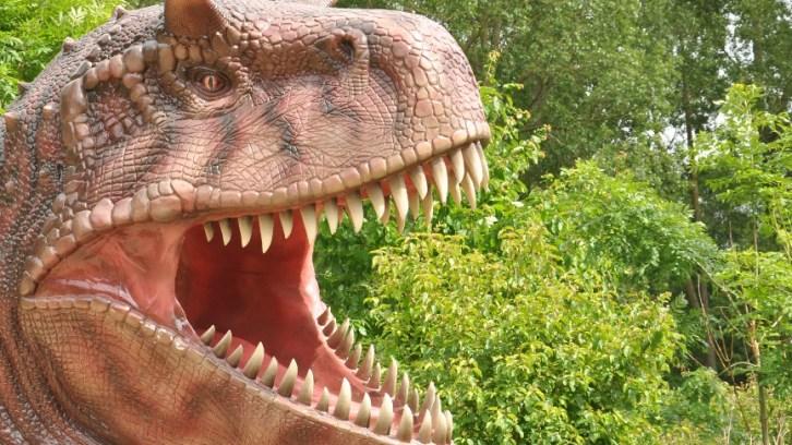 Rüdiger Kunkel und sein Dinopark in Bobbin