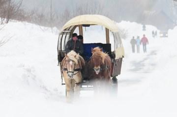 Rügen, ein Wintermärchen