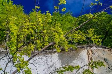Die Top 10 Frühlings-Events auf Rügen