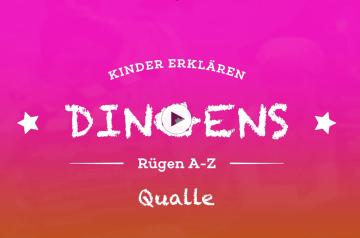 """""""Dingens – Rügen von A bis Z"""": Q wie Qualle"""