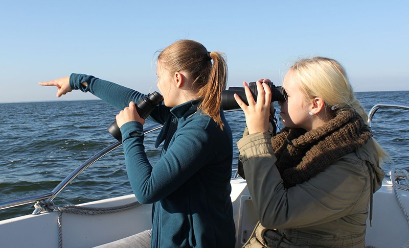 Mit den Rangern des Biosphärenreservats zum Robbenmonitoring