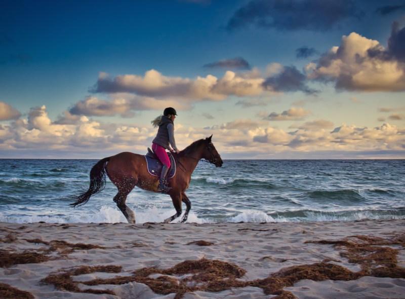 Das Glück dieser Erde: Reiten an der Ostsee
