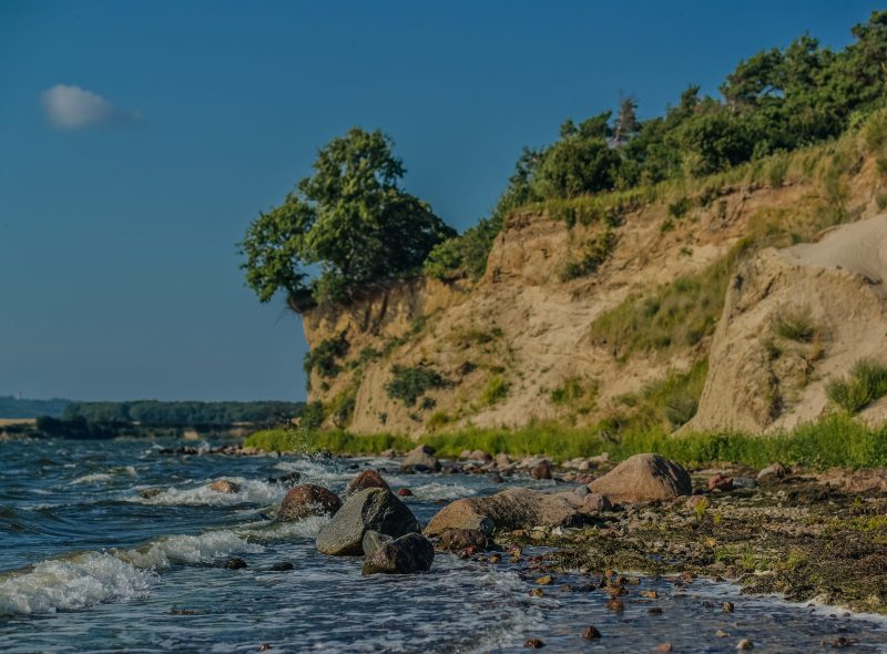 8. Wanderfrühling Rügen : Naturklänge erleben