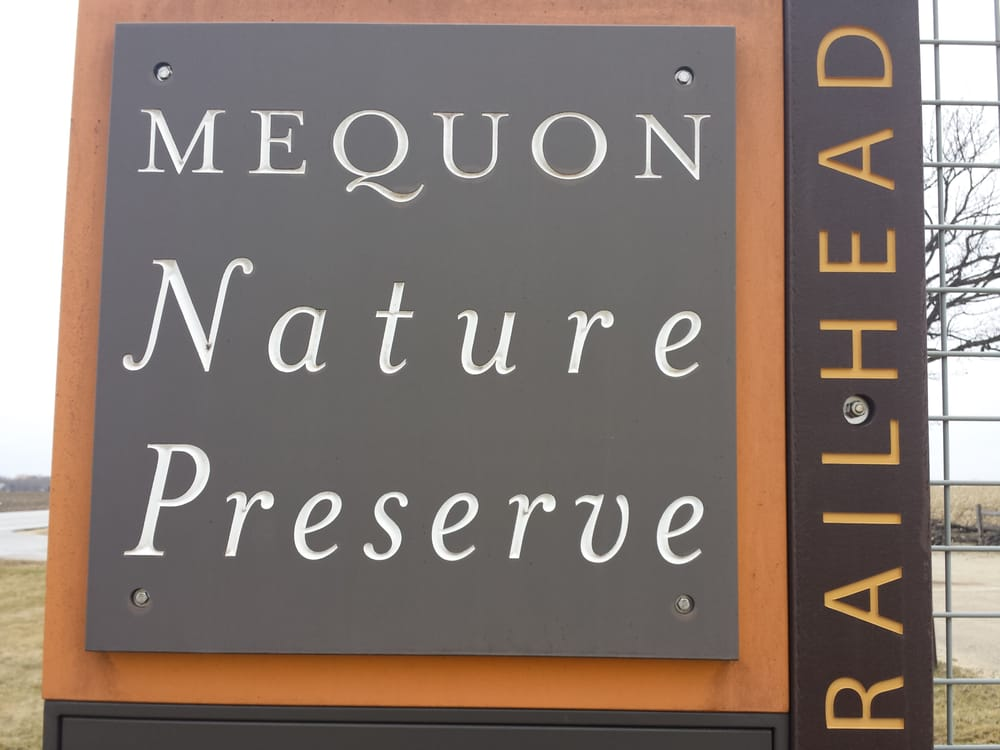 Rice Paddies at the Mequon Nature Preserve?