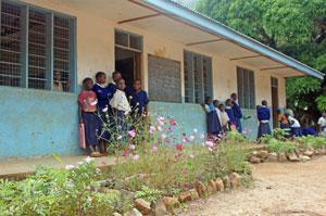 Schule in Yamba