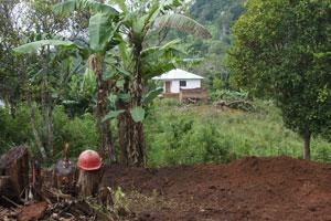 Hausbau in Yamba