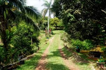 @ Farm, Melaka